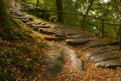 Un escalier de roche dans la forêt d'automne Image stock