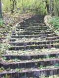 Un escalier lithoidal est en parc Photos libres de droits