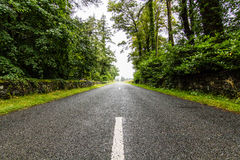 Un'escursione di un giorno in Irlanda Fotografia Stock Libera da Diritti