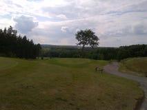 Un espace vert sur un terrain de golf un jour ensoleillé Photos stock