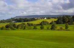 Un espacio abierto y un verde del golf en el parkland cursan en las huevas River Valley cerca de Limavady en Irlanda del Norte fotografía de archivo libre de regalías