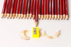 Un'esposizione di un gruppo di matite Fotografia Stock