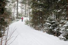 Un esquí del campo a través de la mujer en el bosque foto de archivo libre de regalías