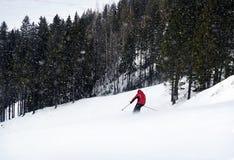 Un esquiador está esquiando abajo de la cuesta en un hombre del bosque está llevando la chaqueta roja Imagen de archivo