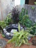 Un estanque de peces del bajo costo Foto de archivo libre de regalías