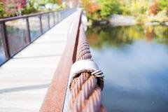 Un'estate su un ponte Immagine Stock