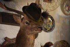 Un estimado con un sombrero cerca de una red de pesca en el delta de Danubio Imagenes de archivo