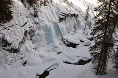 Un estratto di inverni Fotografia Stock