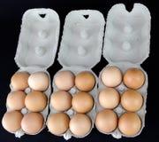 Un et demi-douzaines d'oeufs brun clair dans des boîtes en carton Image stock