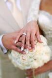 Un etude de la boda está en los colores, anillos de bodas Imagen de archivo libre de regalías