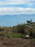 Un fútbol en una isla peruana Imagenes de archivo