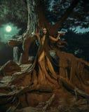 Un fabuloso; ninfa Gyana del bosque Fotografía de archivo libre de regalías