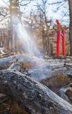 Un fascio luminoso prima di rosso Torli di A Immagine Stock Libera da Diritti