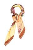 Un fazzoletto da collo di seta è marrone con l'immagine colorata isolata su un fondo bianco Fotografia Stock Libera da Diritti