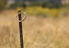 Un ferro di cavallo. Fotografie Stock