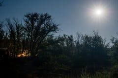 Un feu brûle à l'intérieur de la forêt dans une nuit de pleine lune Image stock