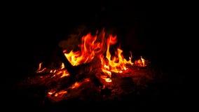 Un feu de camp clignote et rougeoie sur une rive clips vidéos