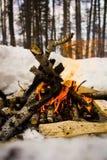 Un feu en plein air image libre de droits