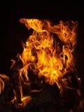 Un feu juste chaud et beau Images stock