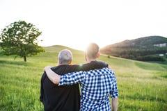 Un figlio adulto dei pantaloni a vita bassa con il padre senior che sta in natura al tramonto Isolato su bianco immagini stock