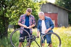 Un fils adulte de hippie et un père supérieur réparant la bicyclette perforent n par jour ensoleillé Photo stock