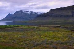 Un fiordo pacífico en Islandia septentrional imagen de archivo libre de regalías
