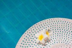 Un fiore di due plumerie sul cappello Fotografie Stock Libere da Diritti
