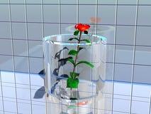 Un fiore misterioso royalty illustrazione gratis