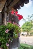 Un fiore sul vaso che appende con la finestra di legno nel vecchio stile immagini stock