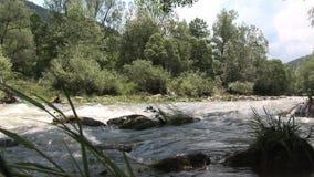 Un fiume in Bulgaria archivi video