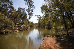 Un fiume che attraversa John Forrest National Park Immagine Stock