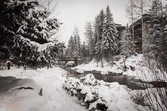 Un fiume circondato da neve in Vail, Colorado durante l'inverno immagini stock