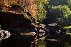 Un fiume del tipo di specchio Immagine Stock