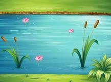 Un fiume e un bello paesaggio Fotografie Stock Libere da Diritti