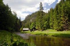 Un fiume freddo alla valle verde fotografia stock libera da diritti
