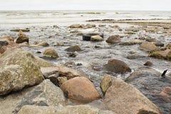 Un fiume inquinante che sfocia nell'oceano del mondo Immagini Stock Libere da Diritti