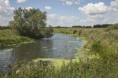 Un fiume nei campi Fotografia Stock Libera da Diritti