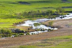 Un fiume nel pascolo Fotografie Stock Libere da Diritti