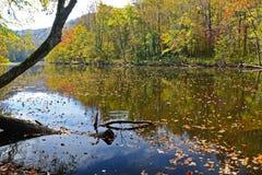 Un fiume nelle montagne fumose è vivo con colore Immagine Stock