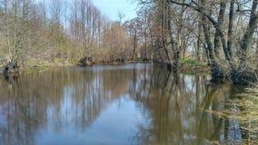 Un fiume per la pesca in natura Fotografia Stock Libera da Diritti