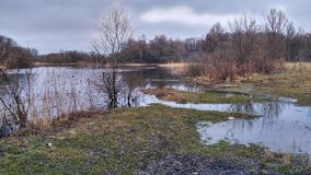 Un fiume per la pesca in natura Fotografia Stock