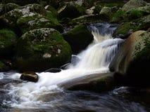 Un fiume selvaggio Immagini Stock