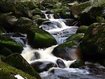 Un fiume selvaggio Immagini Stock Libere da Diritti