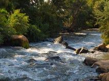 Un fiume in una crepa della montagna con le rive invase immagine stock