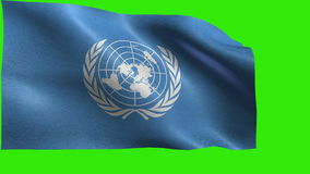 UN flag, Flag of United Nations - LOOP stock video