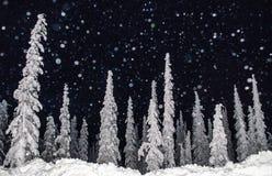 Un flash su neve di caduta Immagine Stock Libera da Diritti