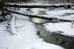 Un fleuve traverse la forêt profonde de l'hiver photo stock