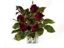 Un florero de rosas imagen de archivo