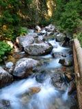 Un flusso della montagna Fotografia Stock