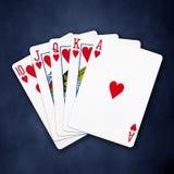 Un flux droit royal jouant le tisonnier de cartes Photo stock